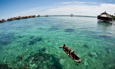 Exodus Borneo Tours